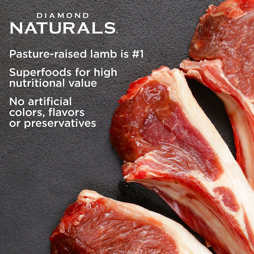 Diamond naturals adult small breed real meat recipe