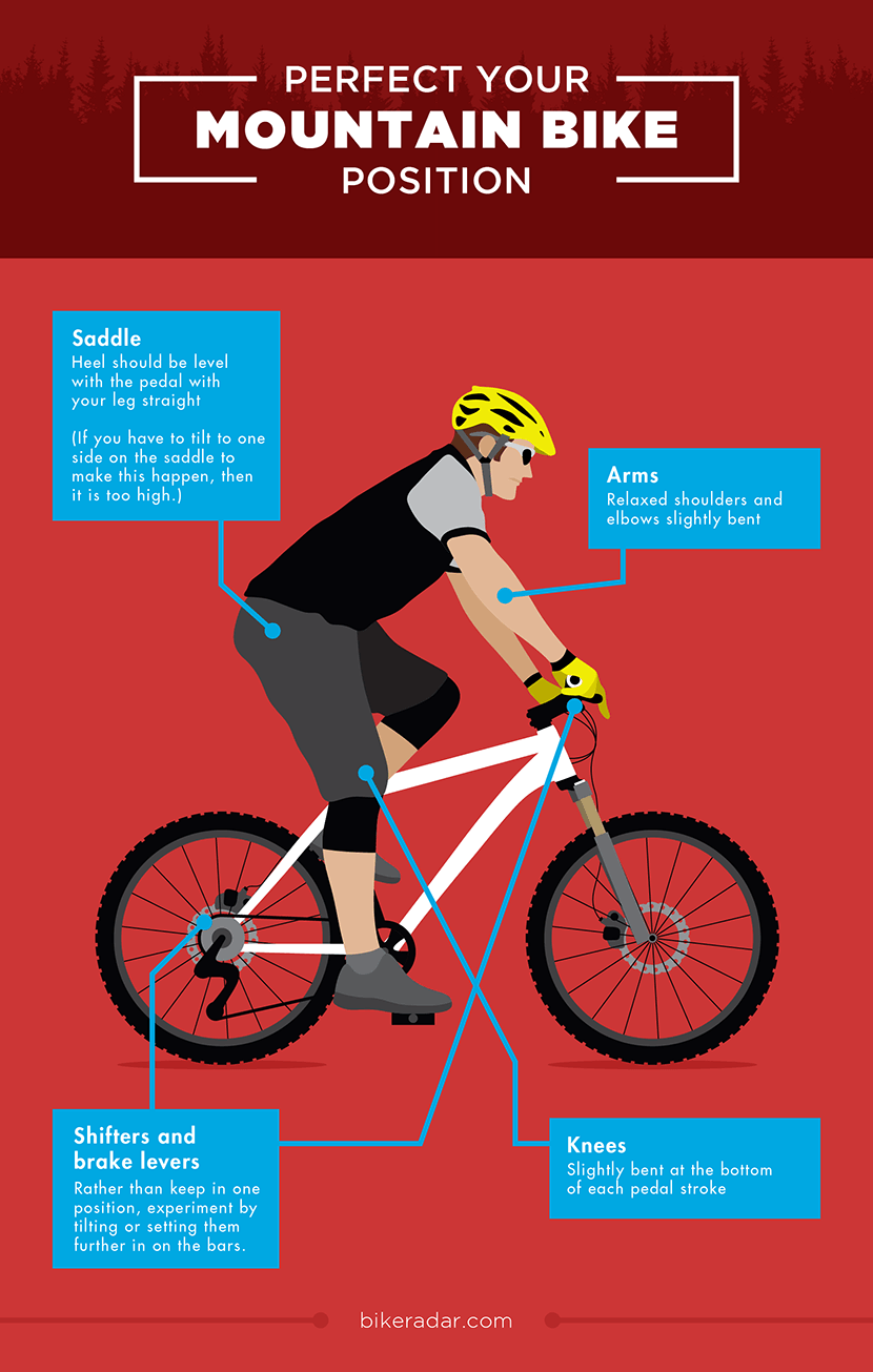 New to Mountain Biking  Essential Tips to Gain More Confidence ... 6c268f4c93