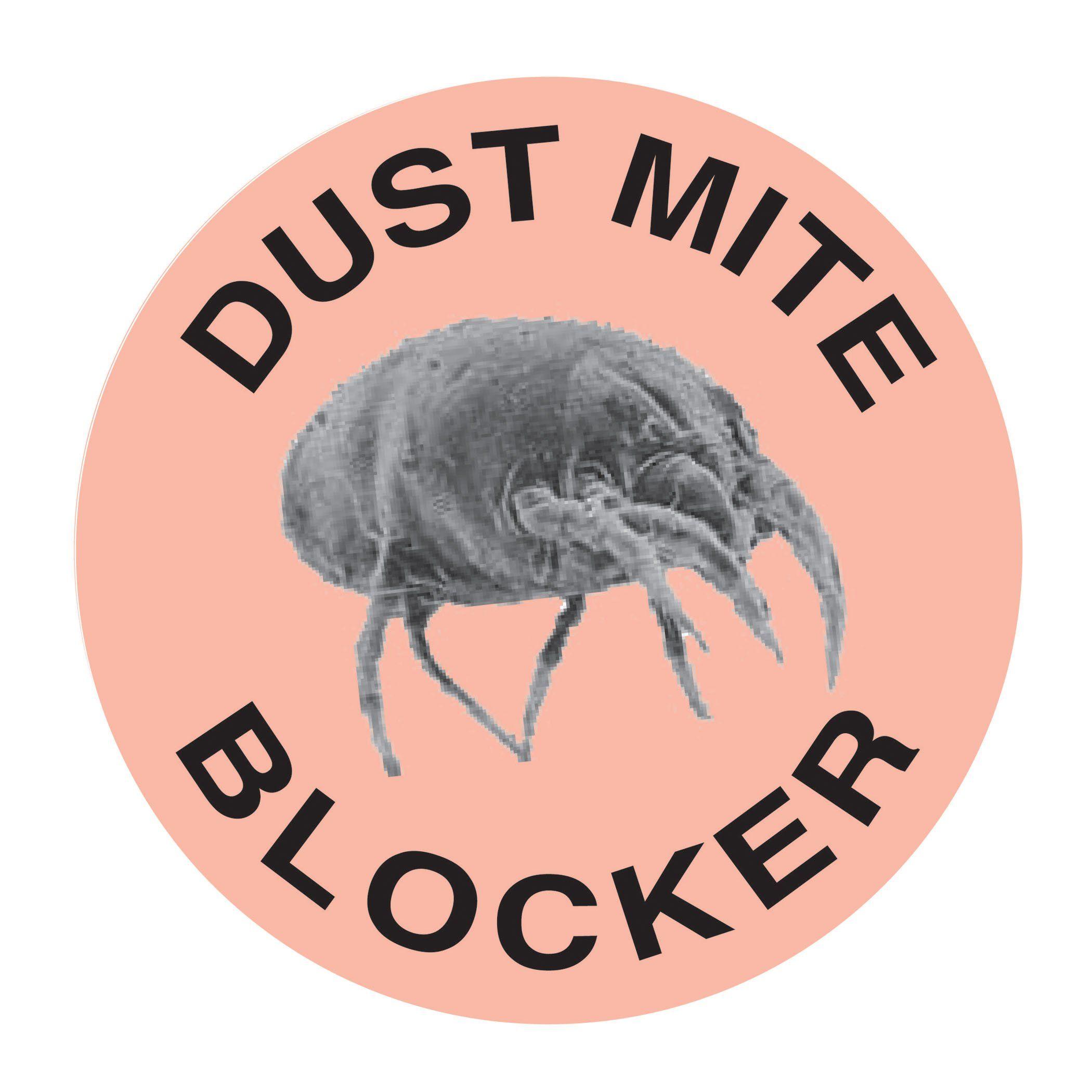 Bed Bug Blocker Hypoallergenic All In One Breathable Queen Mattress