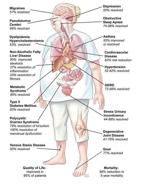 Foods that burn body fats fast photo 1