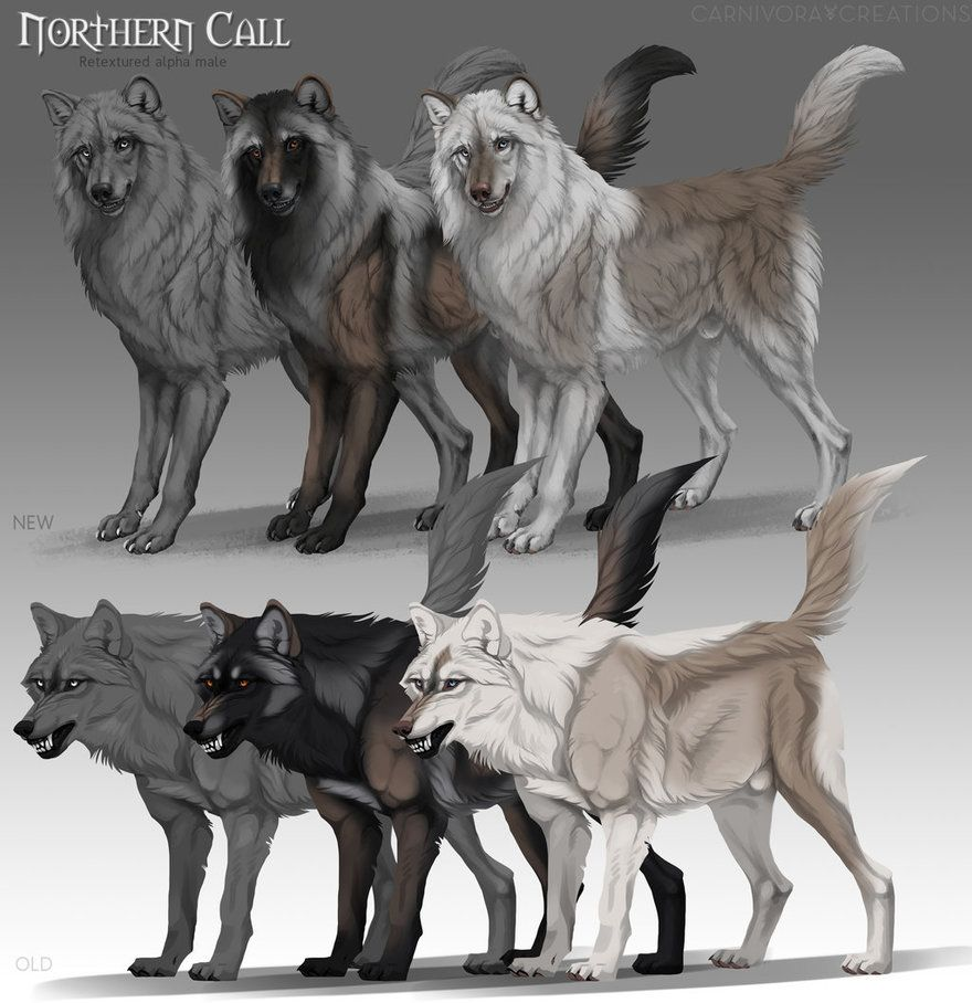 Northern Call Alpha Male By Chickenbusiness Canine Art Anime Wolf Drawing Dog Art