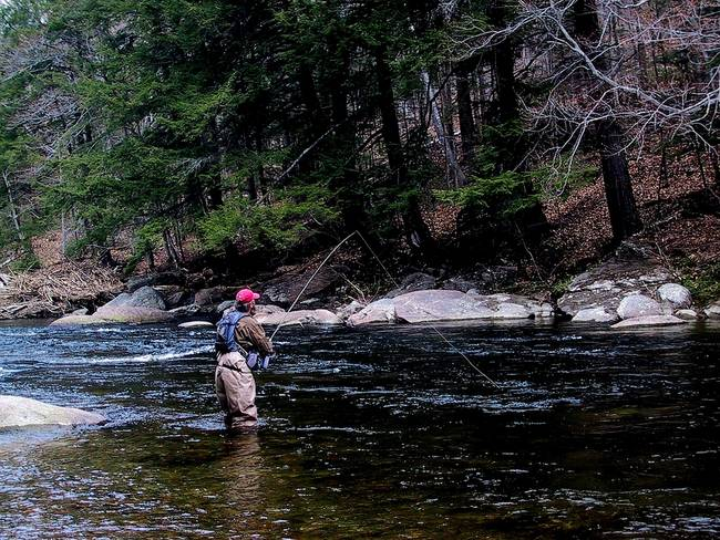 Fly Fishing In Vermont By Robert Thiel Fly Fishing Fish Trout Fishing