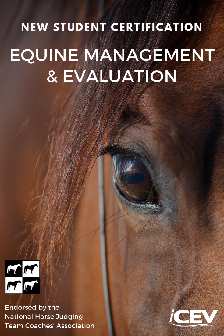 New Student Certification Introducing The Equine Management
