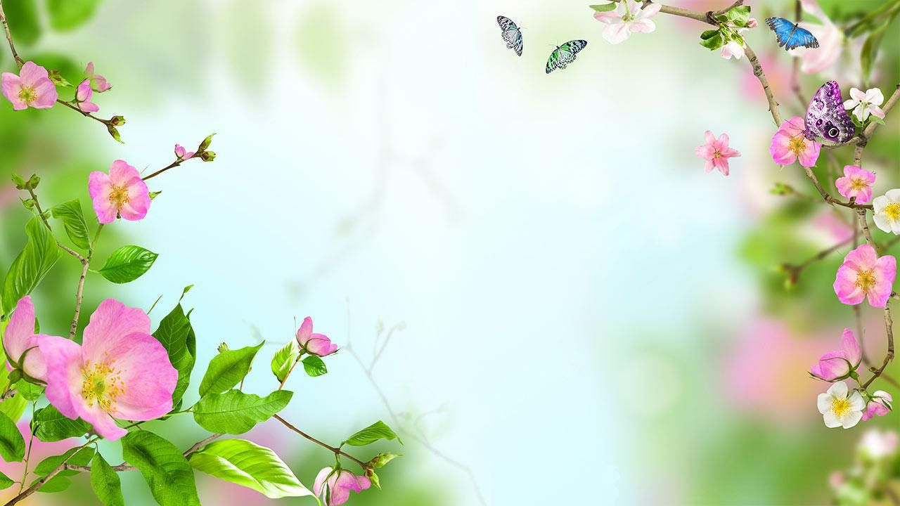 Beautiful Flowers Wallpapers [Wallpaper Wednesday Hongkiat