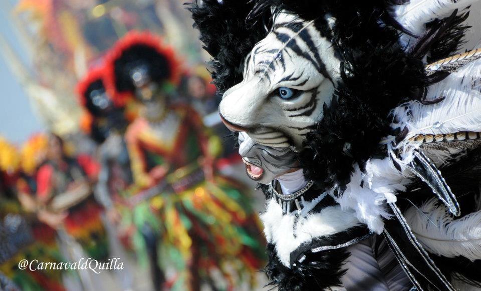 Disfraz De Tigre Blanco En Carnaval Costumes Barranquilla