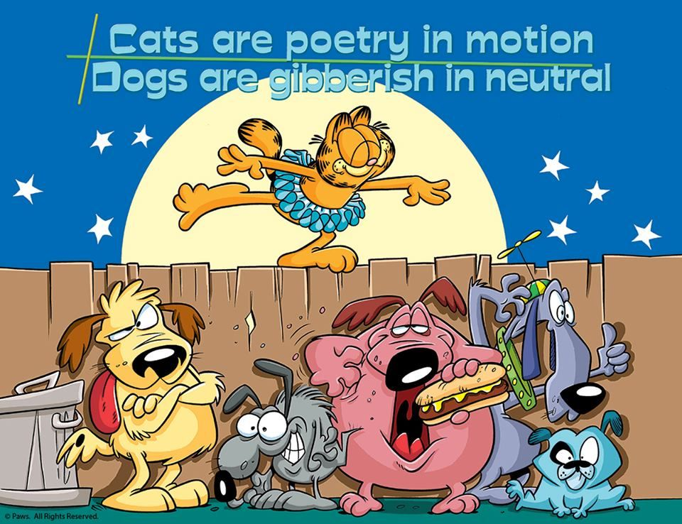 The difference between cats and dogs... Garfield, Dog
