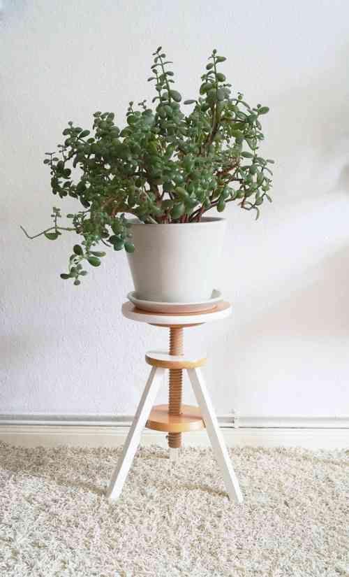 tagre pour plantes moderne