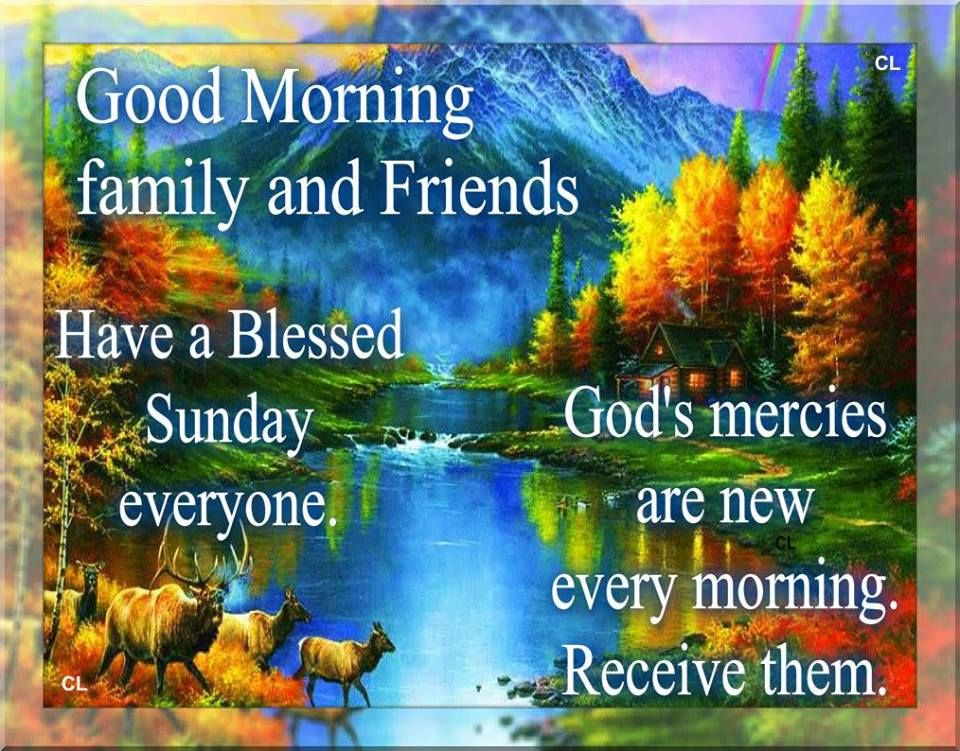 Good Morning, Have A Blessed Sunday Everyone.