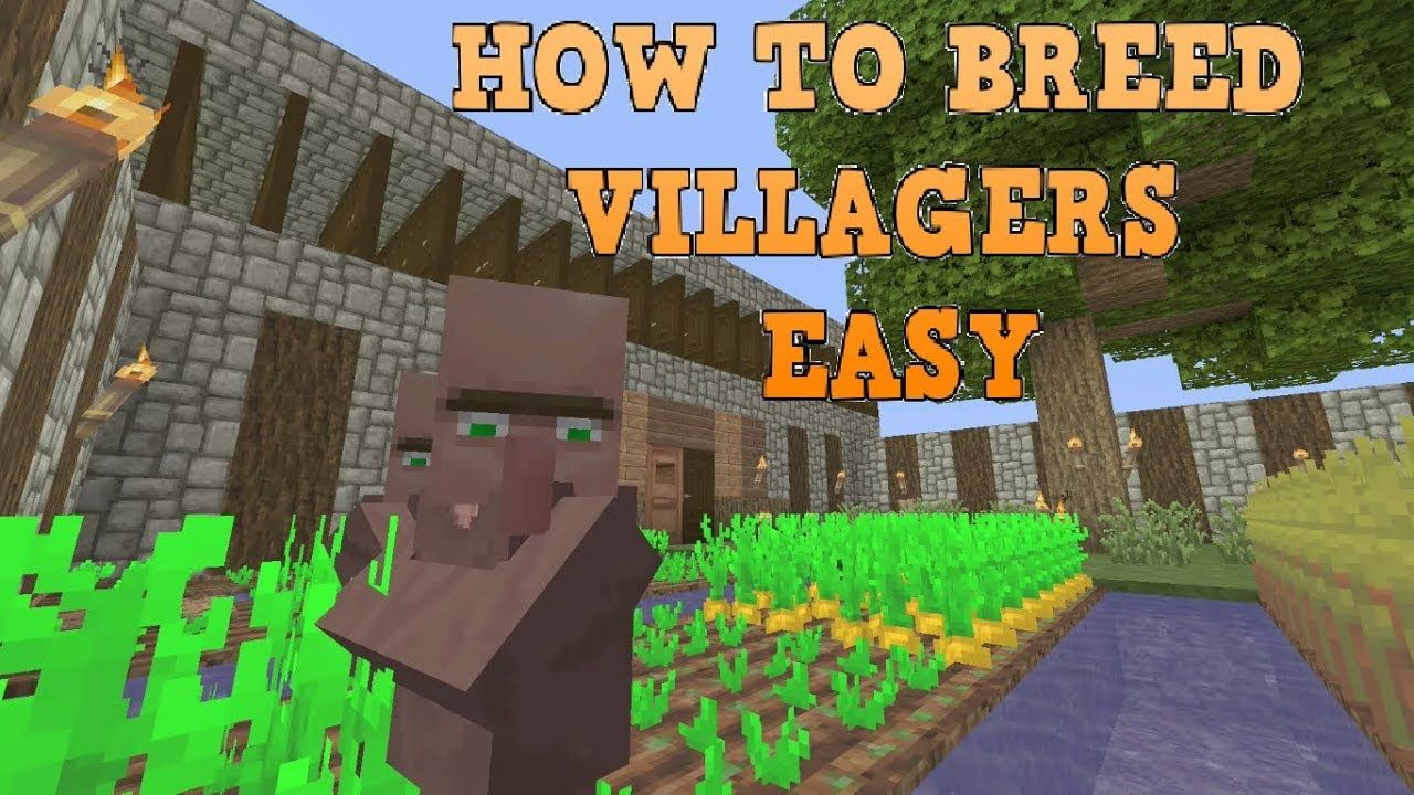 How To Breed Villagers After All Updates Minecraft - YouTube