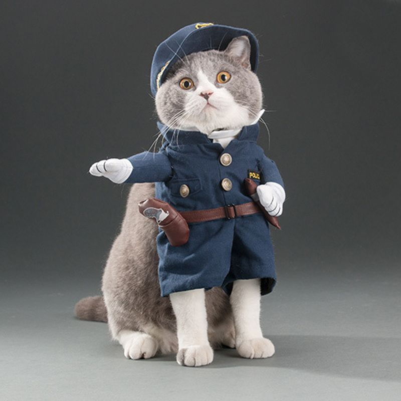 Funny Cat Outfits Pet Costumes Cats Suit Spring And Summer Puppy