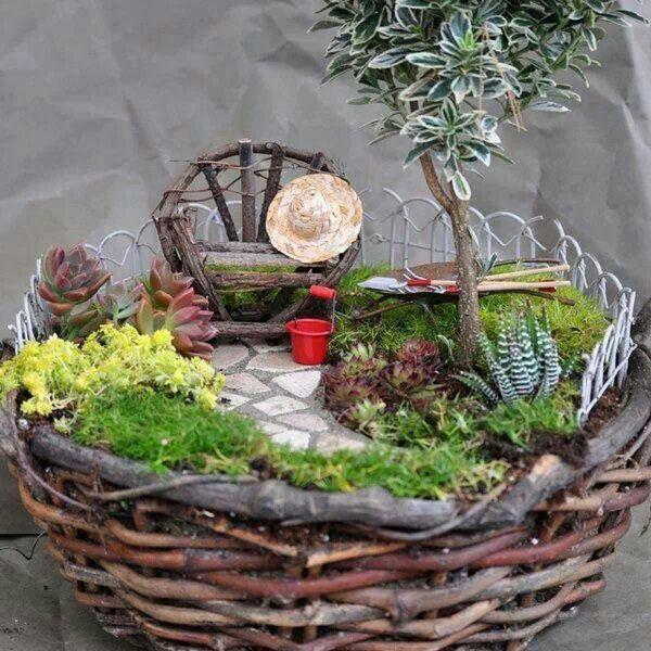 Hermoso arreglo con suculentas jardines peque os for Arreglo jardines pequenos
