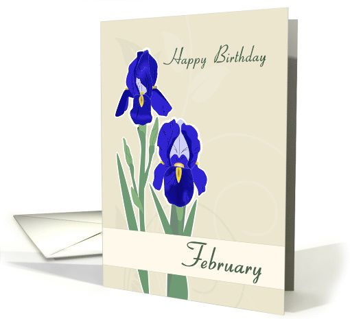 Iris february birth flower for birthday card greetingcarduniverse iris february birth flower for birthday card greetingcarduniversejjbdesigns greetingcard greetingcarduniverse m4hsunfo