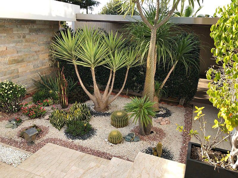 48+ Desert zen garden ideas inspirations