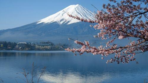 25 японски пословици, над които да се замислите