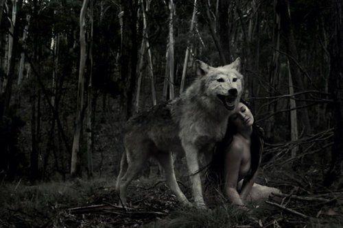 Frases de Mujeres que corren con los lobos