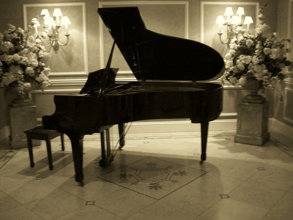 Lyric grand piano lyrics : Grand piano steez | Pianos | Pinterest | Grand pianos and Pianos