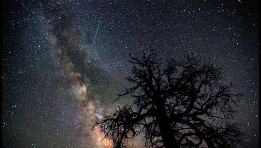 Perseid meteor shower: Long history, bright future