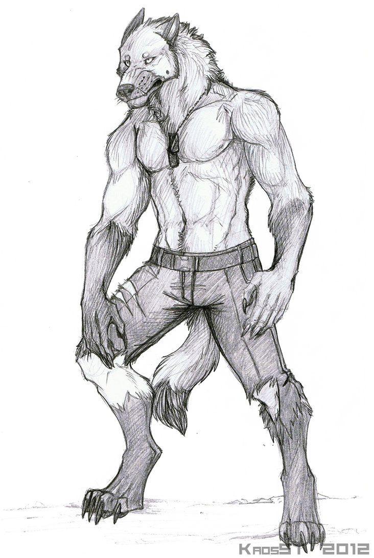 Reverting back by MadDogVII   Werewolves   Pinterest   Lobos ...
