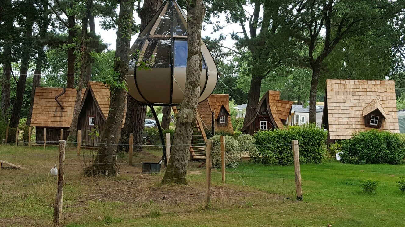 Pin by nancy ford on tree houses with images tree