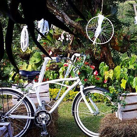 Mi Paloma de modelo en una boda.  #estilodevida #bici #ride #eco