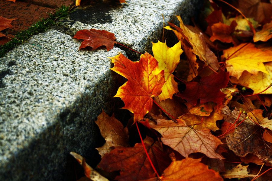 colours on the pavement by myry2009