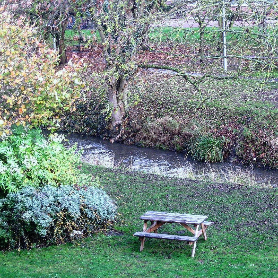 صباح الخير من بي بي سي هنا لندن لندن صباح الخير خريف بريطانيا بي بي سي London Bbcsnapshot Autumn Outdoor Decor Outdoor Instagram