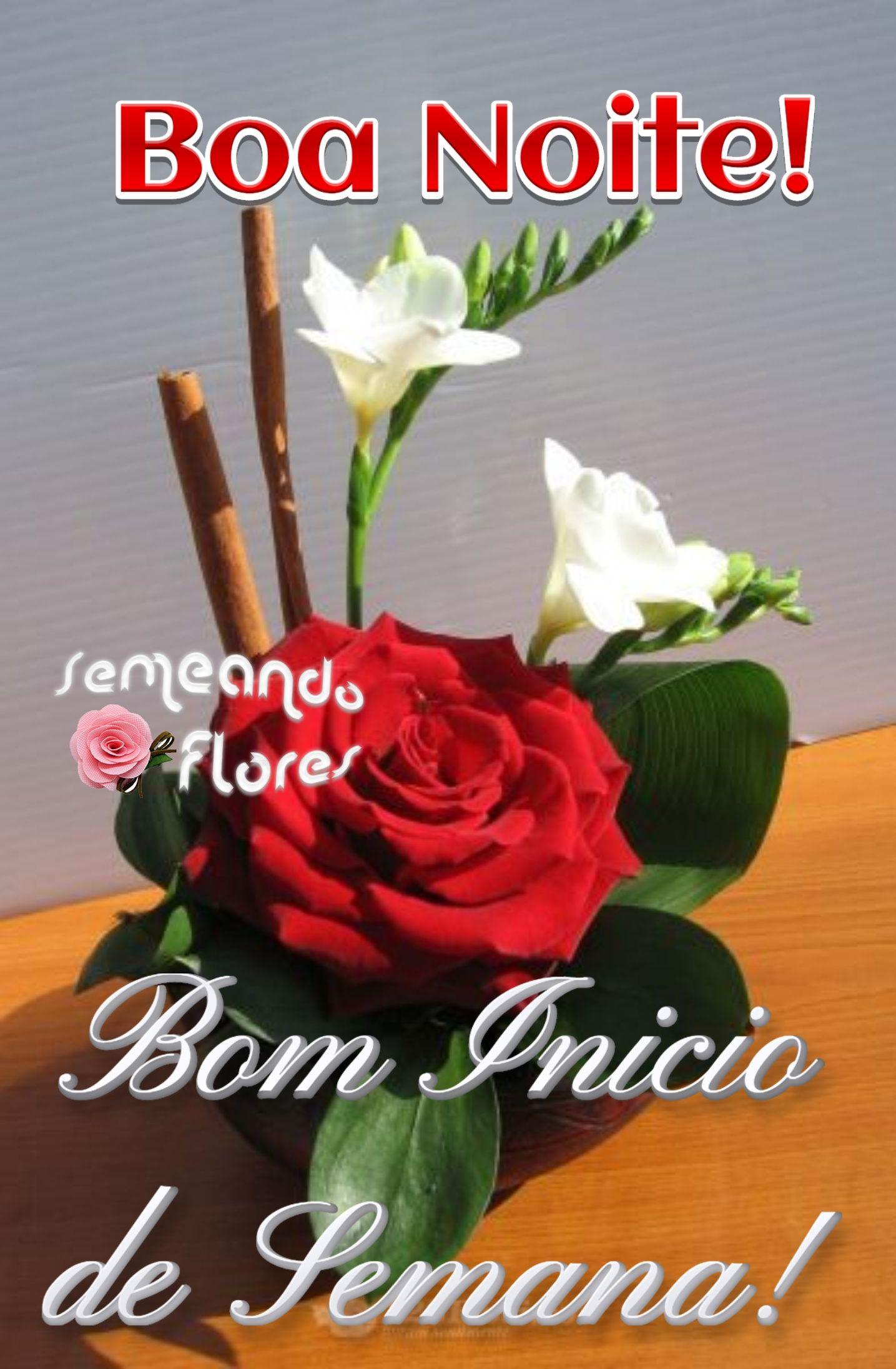 Pin De Cidinha Nobrega Em Semeando Flores 6 Com Imagens