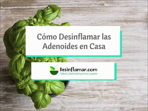 Desinflama Adenoides Y Amígdalas Rápido Con Estos Remedios Caseros Y Naturales Descubre Cómo Curar Adenoides Sin Remedios Remedios Caseros Remedios Naturales