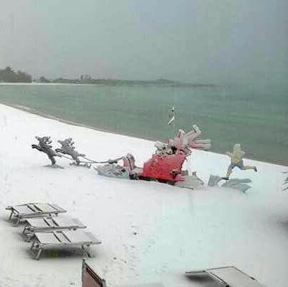 Le foto dei lettori: IL GRANDE GELO IN PUGLIA … http://libriscrittorilettori.altervista.org/3718-2/ #fotolettori #puglia #neve #grandegelo