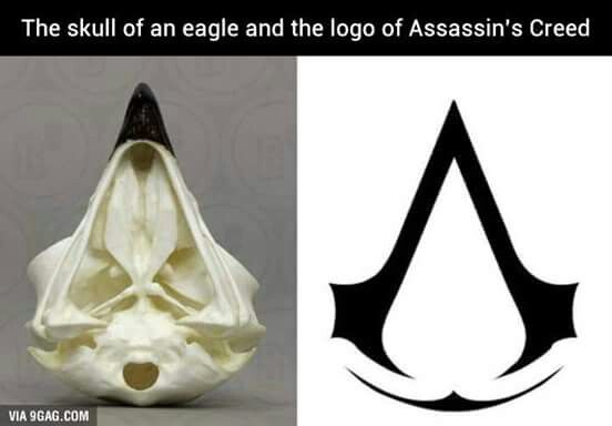 Pin De Gwen Culton En Shit Logo De Assassins Creed Tatuajes Assassins Creed Assassins Creed 2