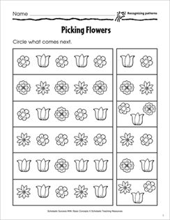 Recognizing Patterns Picking Flowers Basic Concepts Activity