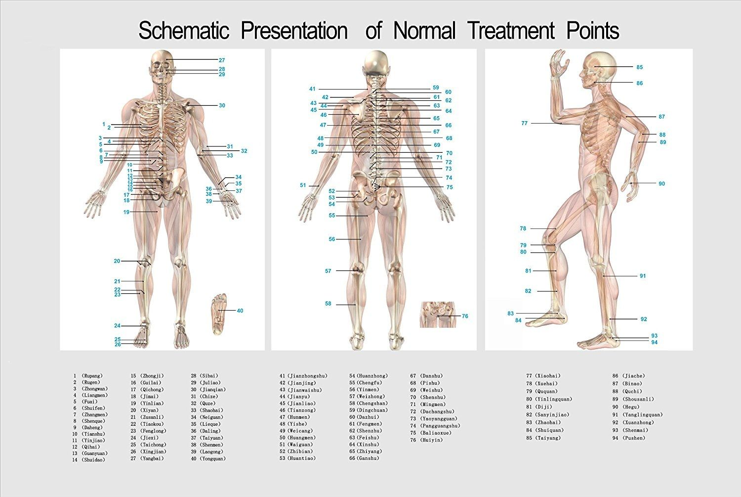 Schematic presentation of treatment points. | TENS | Pinterest