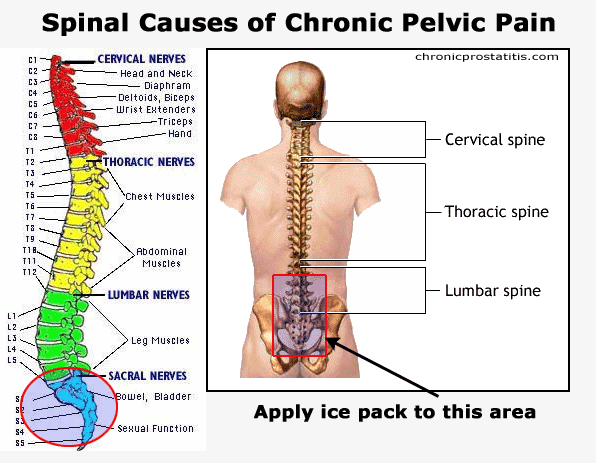 your spine one way of testing if your problem is spine related is