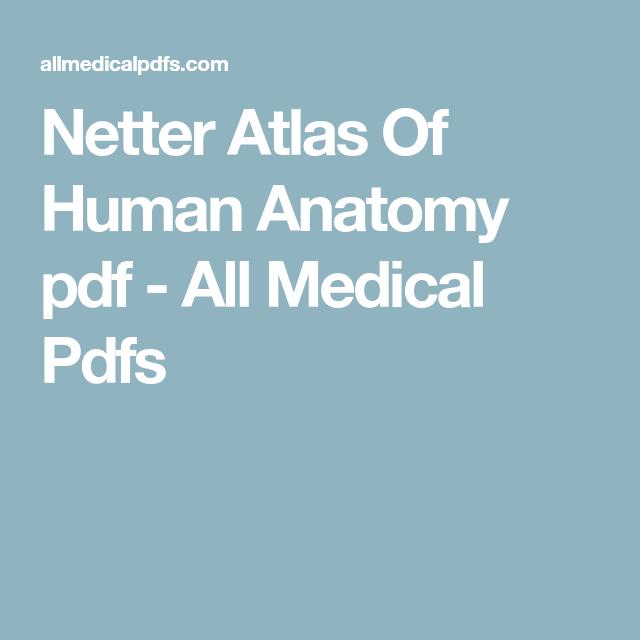 Snell Clinical Anatomy By Regions Pdf Anatomy Anatomy Human