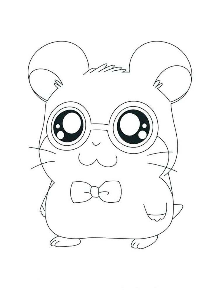 Dwarf Hamster Coloring Pages Hamsters Small Animals That For Some People Look Like Mice Are S In 2020 Animal Coloring Books Animal Coloring Pages Cute Kawaii Animals