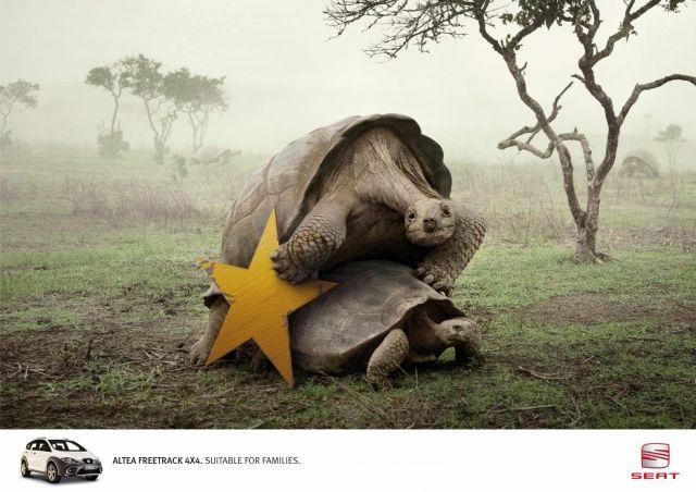 Adeevee - Seat Cars Altea 4x4 Freetrack: Turtles, Lions, Rhinos