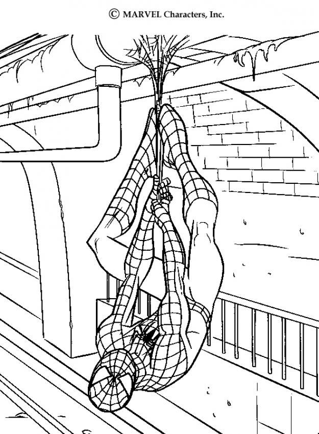 Spidermans Webs Coloring Page You Can Print Out This But Also Color Online Free SPIDER MAN Pages