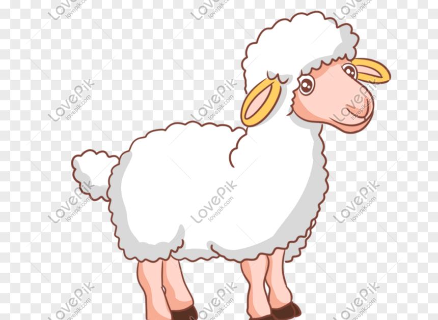 Terkeren 26 Gambar Kartun Domba Putih Ilustrasi Lukisan Tangan Kambing Putih Gambar Unduh Gratis Imej Domba Ikon Domain P Ilustrasi Lukisan Kartun Ilustrasi