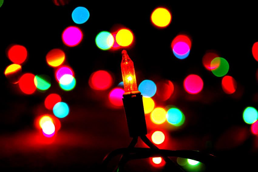Image result for luces de navidad photoreal HOLIDAY COZY