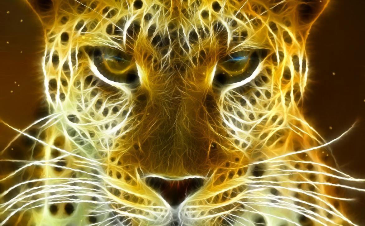 Animated Cheetah Wallpaper animated background images    - wild felines animated