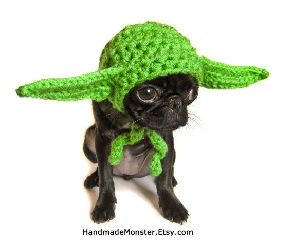 yoda inspired STAR WARS hat costume - I think fudge would not be happy with me but he'd look so adorable in this!