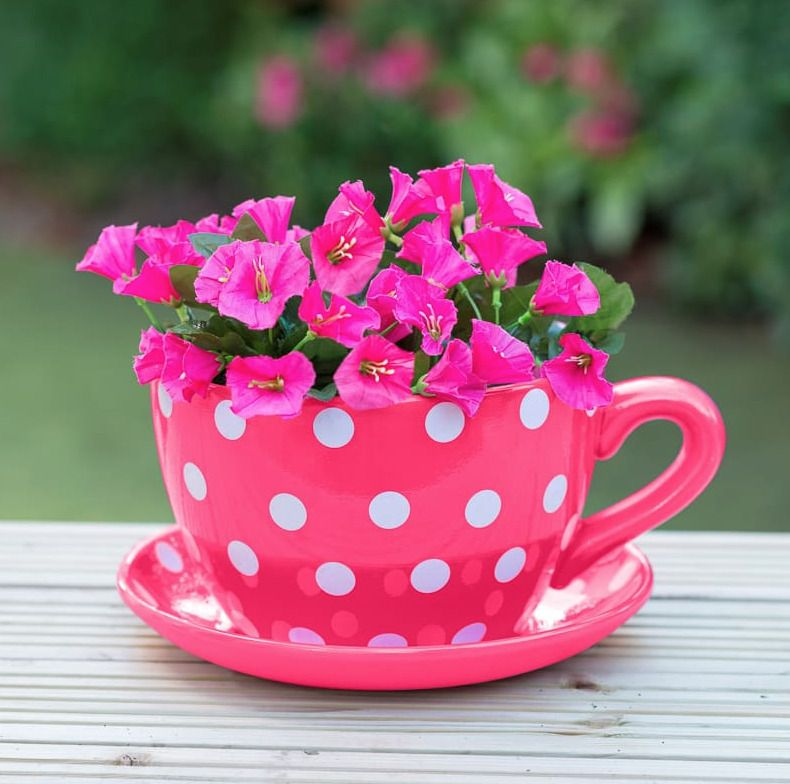 Giant Tea Cup And Saucer Planter Jumbo Pink Polka Dot Design Plant Pot Brand New Unbranded Tea Cup Planter Tea Cups Fun Planters
