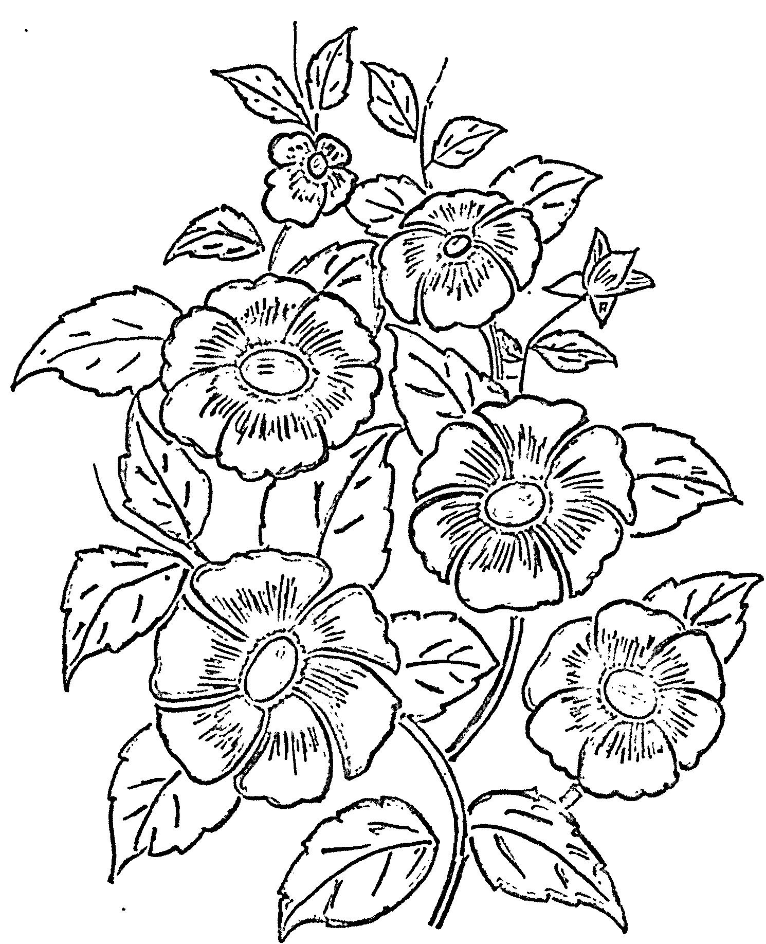 Pin By Twila Rine On Gourds Flower Pattern Drawing Glass