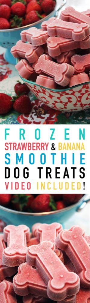 Frozen Strawberry and Banana Smoothie Dog Treats #strawberrybananasmoothie