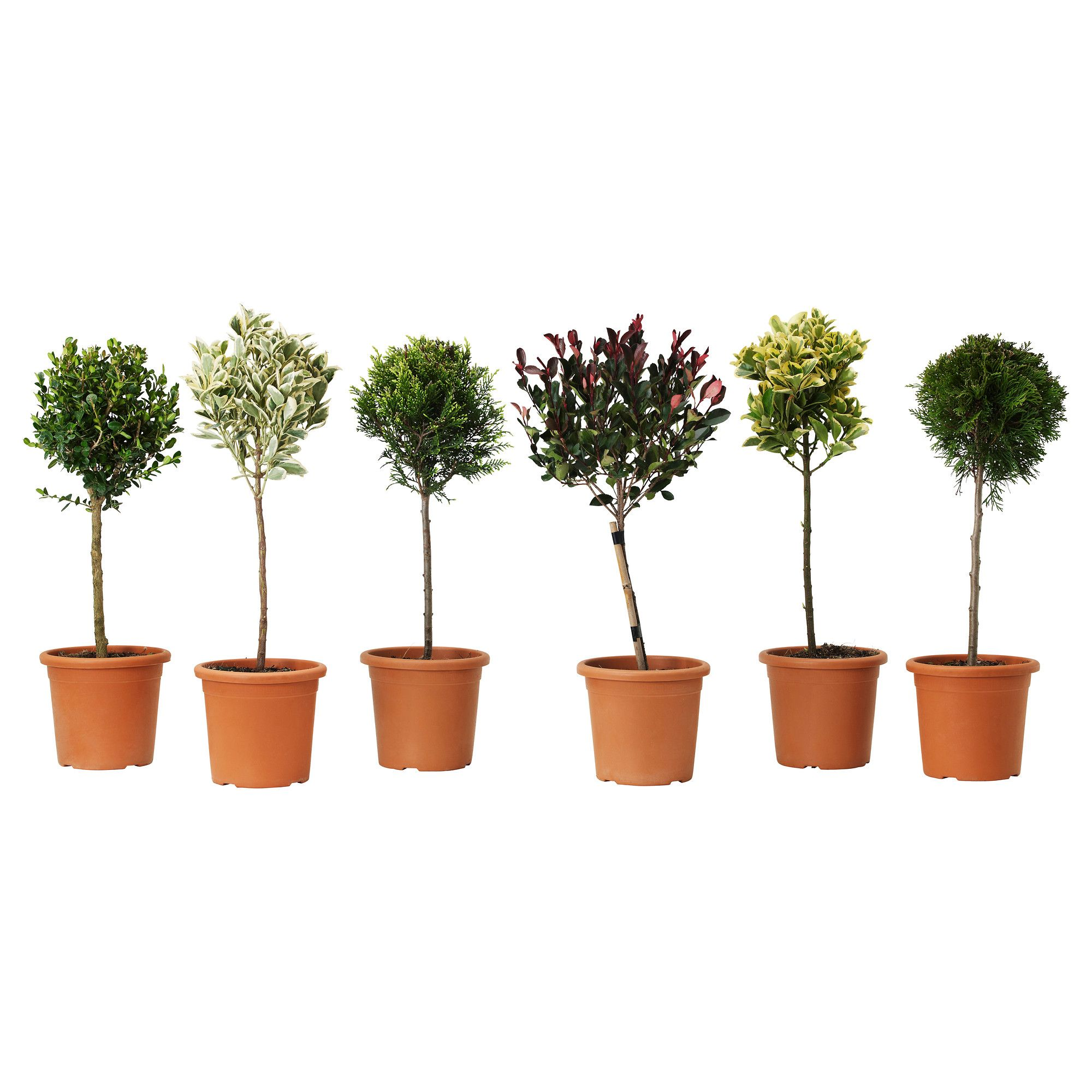 Schön Ikea Gartendeko Ideen