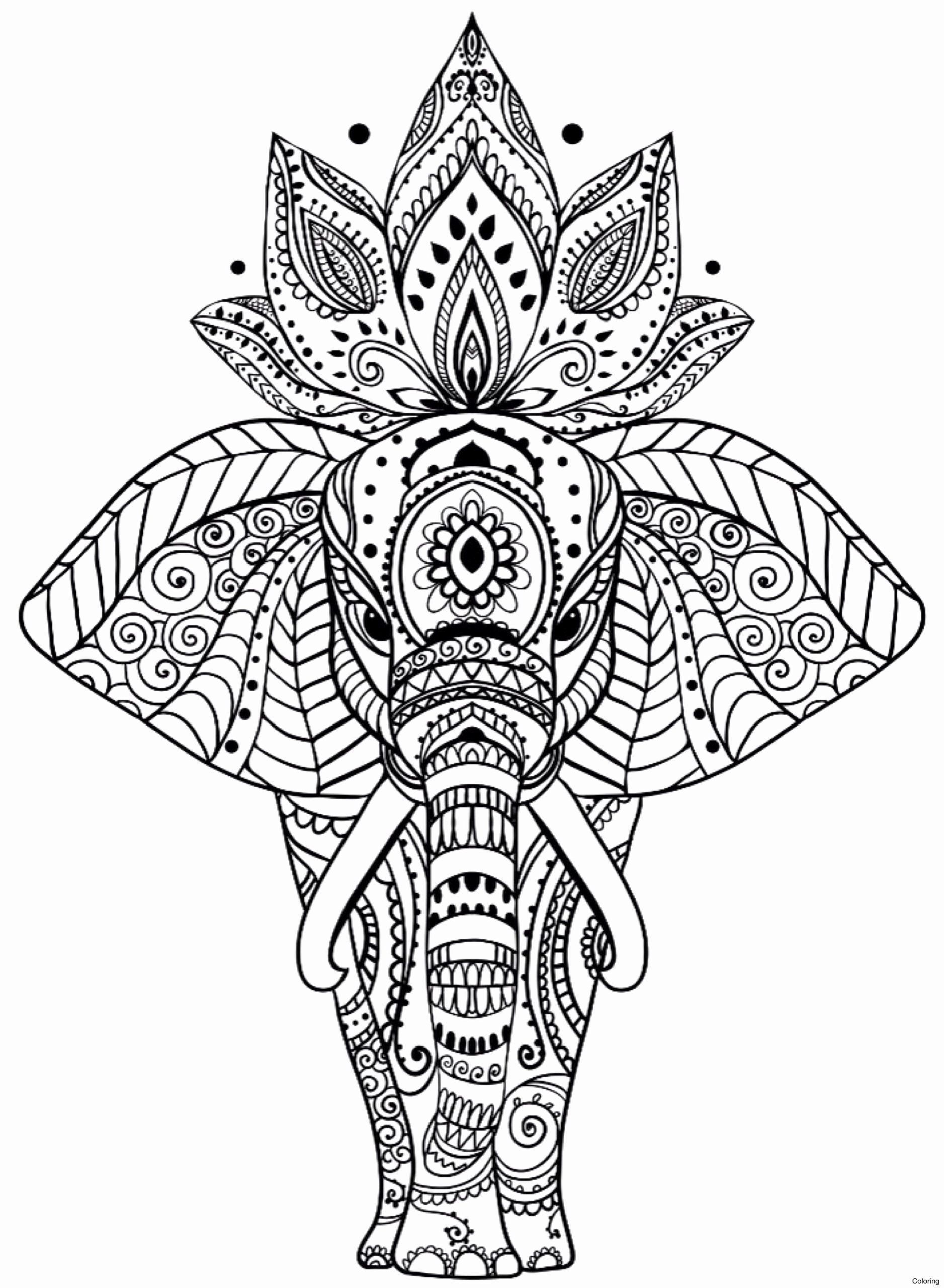 Winter Coloring Pages Pdf in 2020 Elephant coloring page