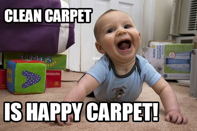 Keep Your Carpets Clean All The Time With Our Stain Free Carpets Only 2 22 Per Sq Ft How To Clean Carpet Carpet Cleaning Pet Stains Natural Carpet Cleaning
