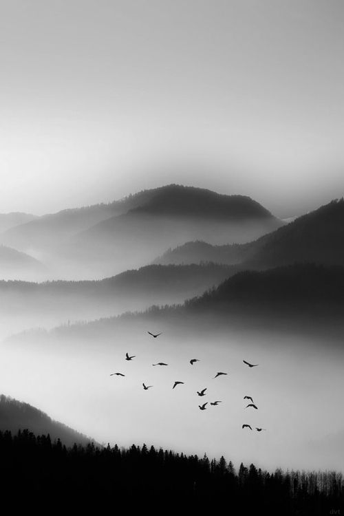 On A Misty Conference Day Nature Pittura Di Paesaggio Ad