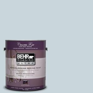 Bathroom color? BEHR Premium Plus Ultra 1-gal. #PPU13-16 Ceiling Tinted to Offshore Mist Interior Paint-555801 at The Home Depot
