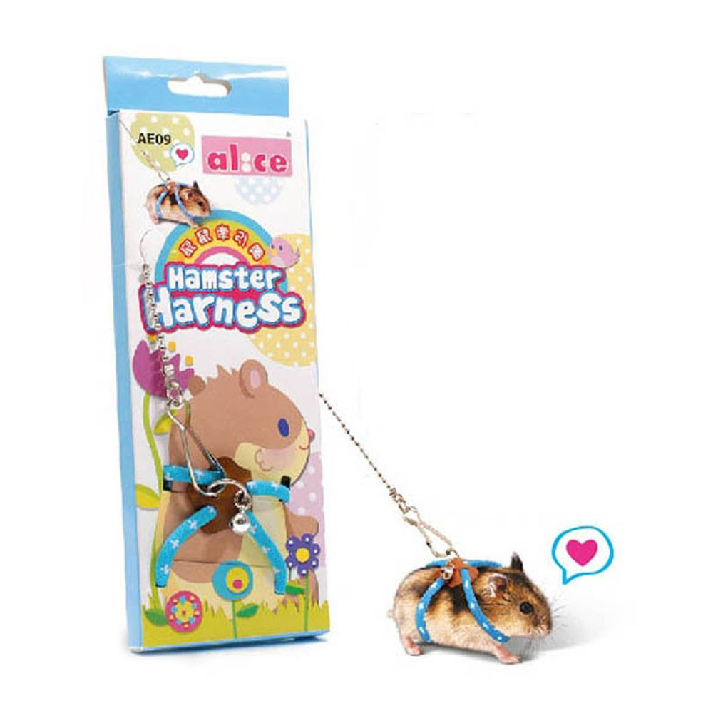 Popular Adventure Land Hamster Gerbil Pet Cage Playhouse Leashes Blue Hamster Care Cute Hamsters Baby Hamster